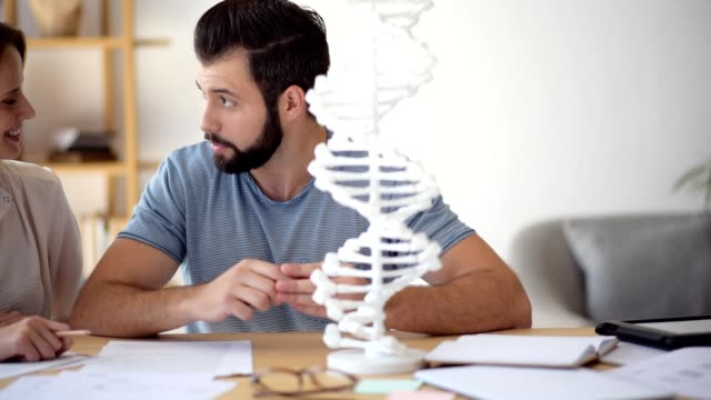 Cheerful guy helping his female groupmate with genetics study Everything is simple. Beautiful blonde lady smiling while listening to her university friend pointing toward a DNA model and explaining some nuts and bolts of genetics. biosensor stock videos & royalty-free footage