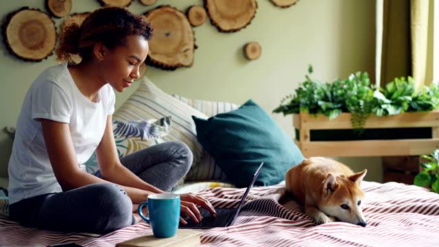 wesoły mieszany student wyścigu jest za pomocą laptopa robi pracę domową siedzi na łóżku w domu, podczas gdy jej uroczy pies odpoczywa w pobliżu niej. nowoczesna technologia i koncepcja edukacji. - praca domowa filmów i materiałów b-roll