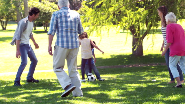 Cheerful multi generation family playing football video