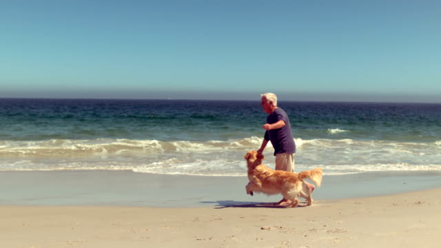 Cheerful senior man playing with dog video