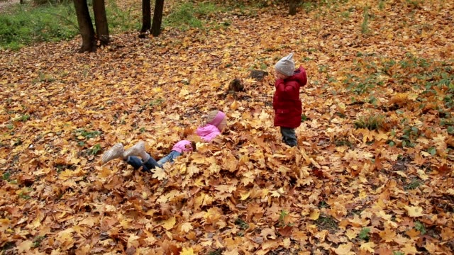 Cheerful siblings jumping in pile of autumn leaves Lovely happy children having fun in autumn park. Joyful sister and cute toddler brother jumping into pile of fallen foliage outdoors. Cheerful siblings enjoying freetime and playing with yellow fallen leaves over beautiful autumn landscape background heap stock videos & royalty-free footage