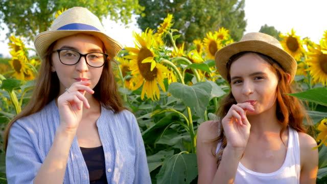歡快的十幾歲的女孩吃甜棒糖和微笑在黃色領域的向日葵背景 - 波板糖 個影片檔及 b 捲影像