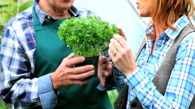 Cheerful woman buying plants talking to the gardener video