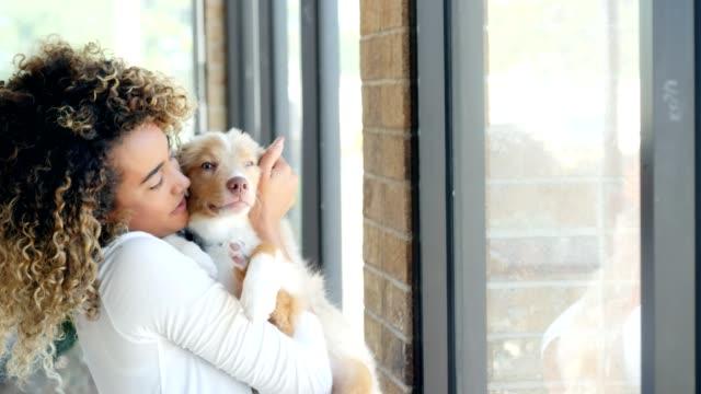 vídeos de stock e filmes b-roll de cheerful woman pets her cute puppy while relaxing at home - cachorrinho