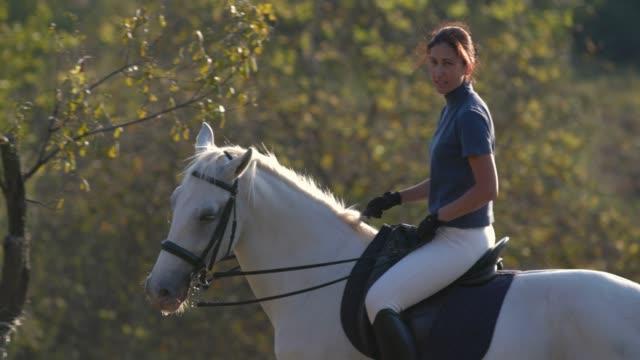vidéos et rushes de femme joyeuse circ. white horse ranch - dressage équestre