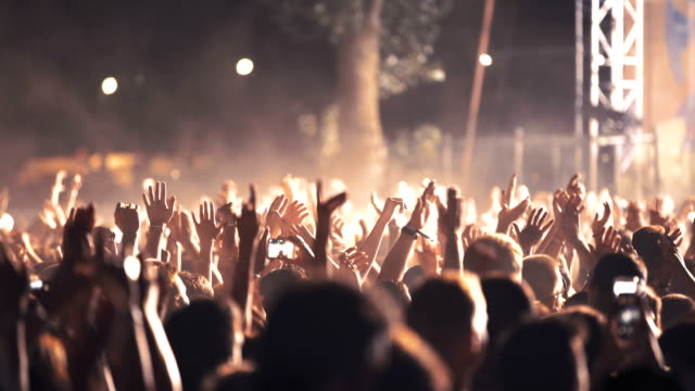 Cheering crowd at a concert. video