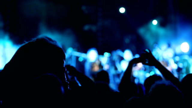Cheering crowd at rock festival video