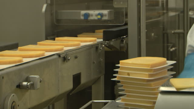 Cheese food industry packaging Assembly Line, video