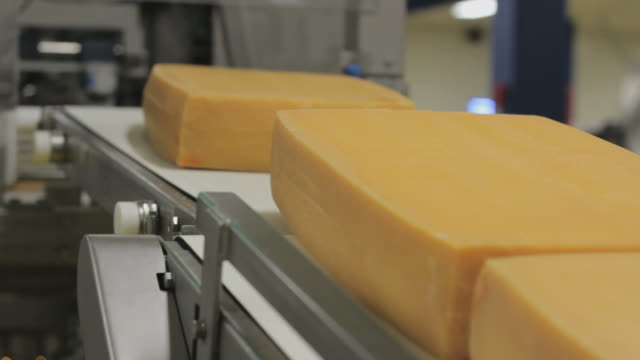Cheese moves on assembly line, closeup video