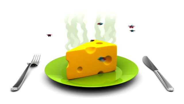 Cheese on a Plate. 3D animation in cartoon style. Alpha channel, loopable. video