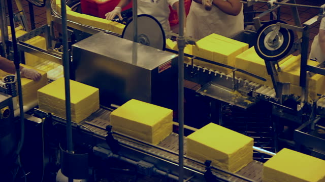 Cheese Production Line - Cutting Station video