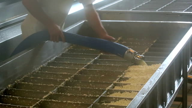 Cheesemaker Filling Cheese Curds in Moulds video