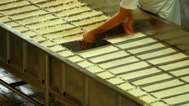 Cheesemaker Turning the Curd Filled Moulds video