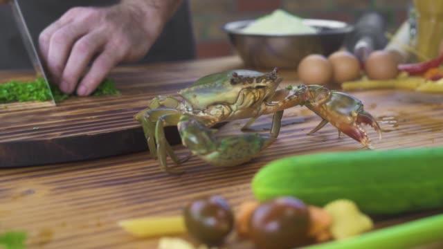 シェフクックレストランでシーフードとイタリアンパスタのための成分を準備します。シーフードレストランで料理のためのライブカニをキャッチ調理。新鮮な食材の地中海料理。料理 - 異国情緒点の映像素材/bロール
