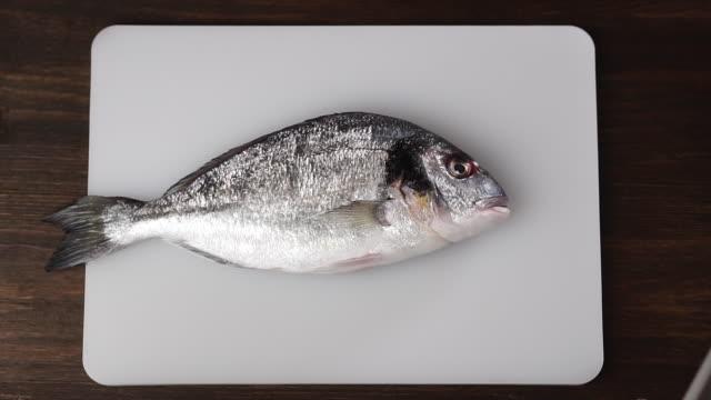 chef wirft frischen fisch auf ein schneidebrett, zeitlupe. - fang stock-videos und b-roll-filmmaterial