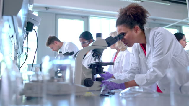 Chemist examining blood through microscope Female chemist adjusting microscopic lens to examine blood. Colleagues are in the back. microscope stock videos & royalty-free footage