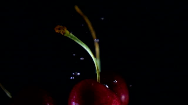 Cherries dropping in water video
