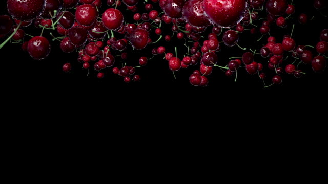 Cherries with Water Drops.