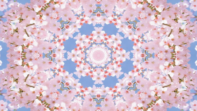 Cherry blossom against blue sky in spring kaleidoscope video