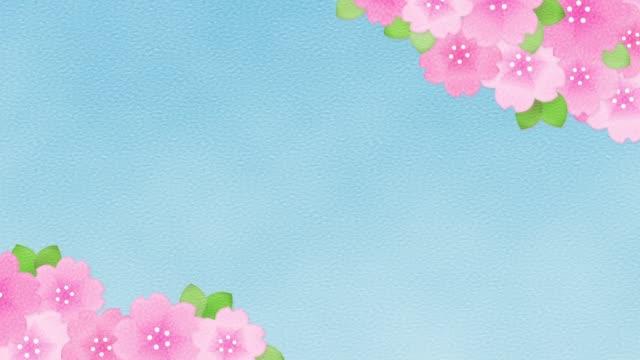 vídeos de stock, filmes e b-roll de animação de flor de cerejeira - cerejeira árvore frutífera