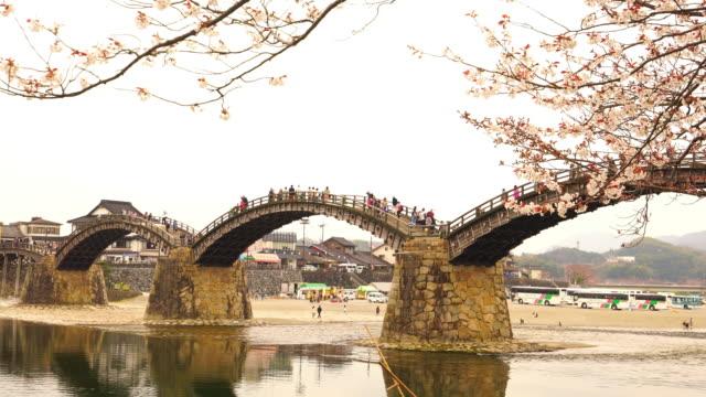 kiraz çiçeği kintaikyo köprüsünde tam bloom - hiroshima stok videoları ve detay görüntü çekimi