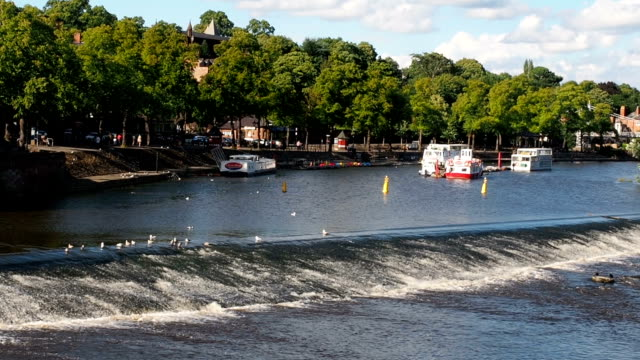 stockvideo's en b-roll-footage met chester river dee - chester engeland