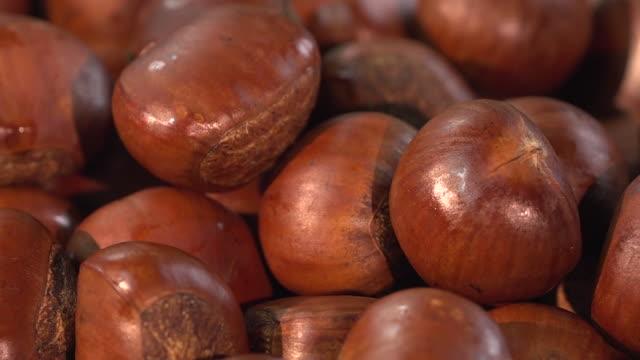 vidéos et rushes de châtaigne / châtaigne - marron couleur