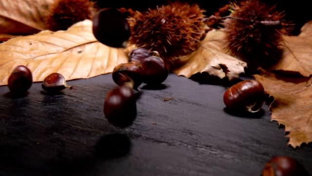 vidéos et rushes de châtaignes tombent sur un conseil en pierre noire - marron couleur