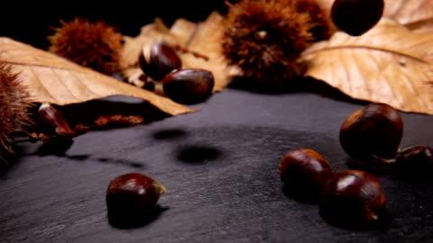 le castagne cadono su una tavola di pietra nera - marrone video stock e b–roll