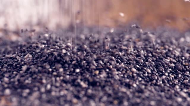 Clerbois graines authentique Slow-Motion laissant tomber sur la table en bois se bouchent - Vidéo