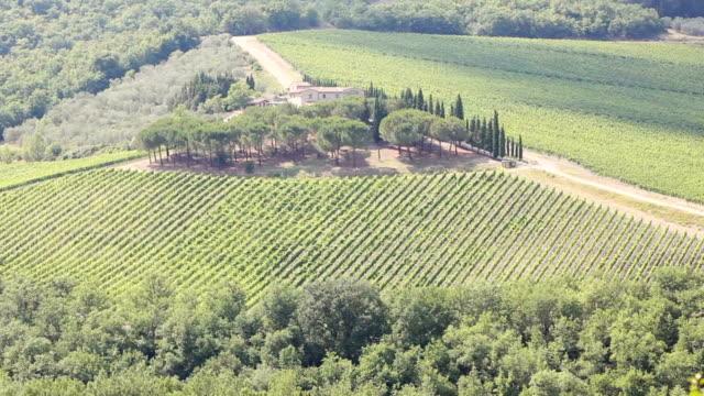 chianti, italian wine and vineyard in rural landscape, tuscany, italy - stenhus bildbanksvideor och videomaterial från bakom kulisserna