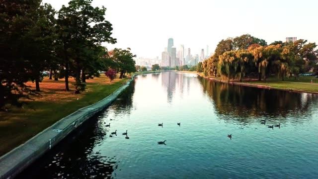 chicago flygfoto över sjön - strandnära bildbanksvideor och videomaterial från bakom kulisserna