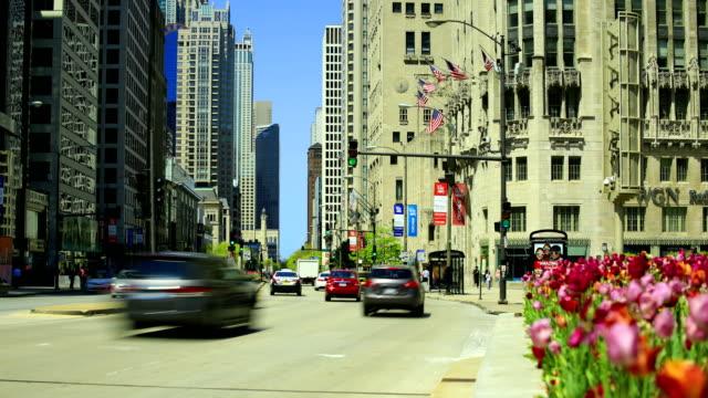 Chicago skyline: video