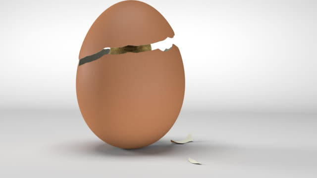 stockvideo's en b-roll-footage met kuiken dat van een ei uitbroedt - ei