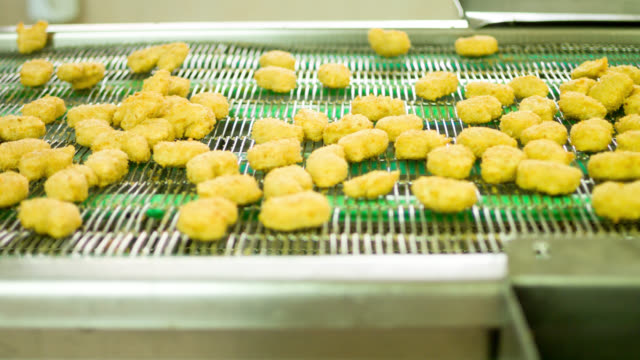 Chicken factory processing nuggets video