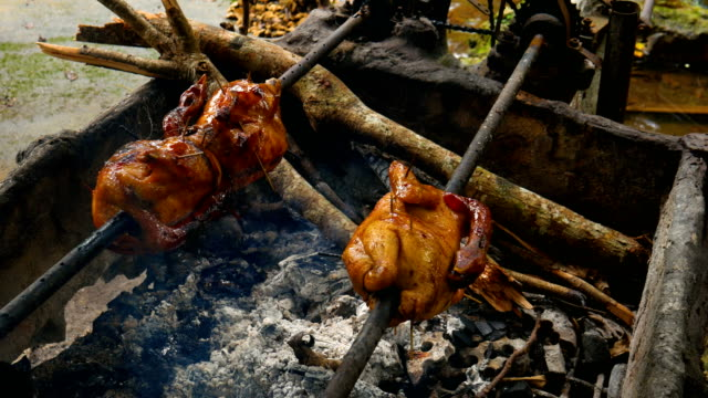 Chicken Grill with Rolling Bar in Nature video