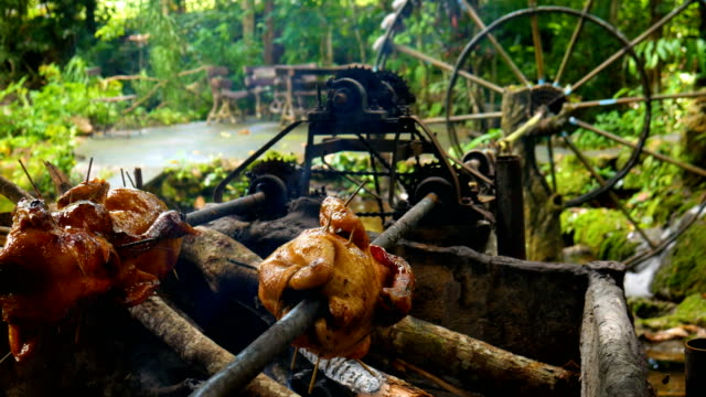 Chicken Grill with Rolling Bar that Rotated by Nature Water Turbine video