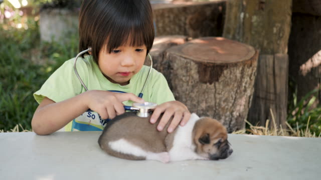 Child doctor playing veterinarian with baby dogs.