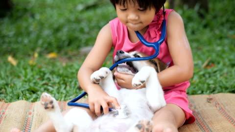 vídeos y material grabado en eventos de stock de niño médico jugando veterinario con perro - mascota