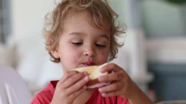 barn äter smörgås - cheese sandwich bildbanksvideor och videomaterial från bakom kulisserna