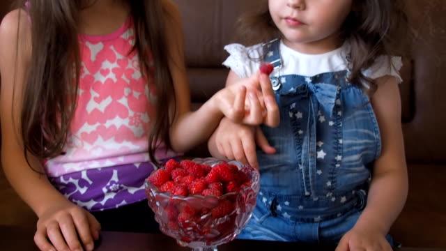 vídeos y material grabado en eventos de stock de un niño come frambuesas - frambuesa