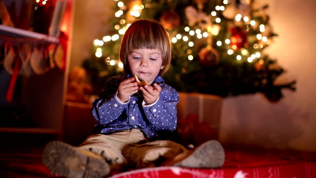 Child Enjoying Christmas Night at Home Young Boy is sitting in lovely, Chrismas decorated home interior and playing with cookies on the floor cookie stock videos & royalty-free footage