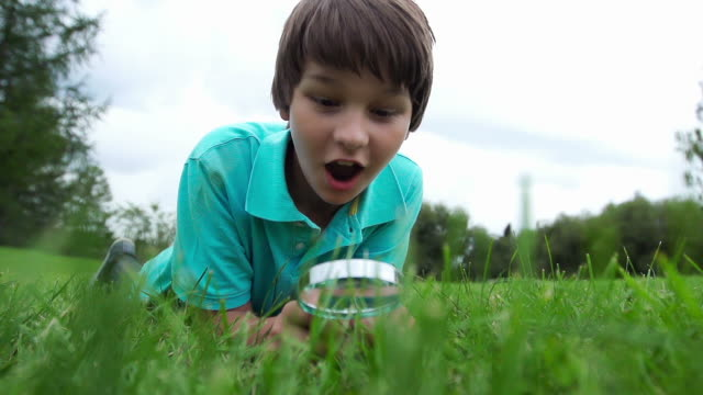 Child finds something big Young good looking boy finds something big in the grass that surprises him.  He is looking through a magnifying glass and something that he is investigating startles him.  His reaction is humorous as he explores science and the world around him. magnifying glass stock videos & royalty-free footage