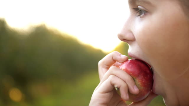 Child Girl Eating Organic Apple in the Garden. Harvest Concept. Close up