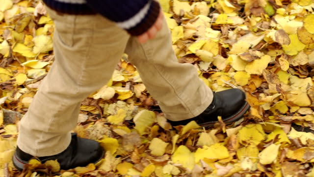 child goes on yellow leaves in autumn, close-up. - fare un passo video stock e b–roll