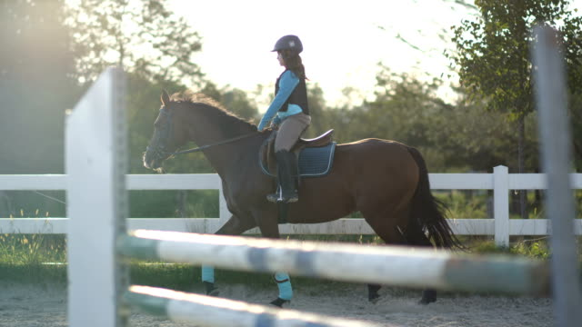 slow motion: a child horseback riding beautiful brown horse in outdoor manege - sella video stock e b–roll