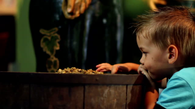 HD STOCK: Child in a museum video
