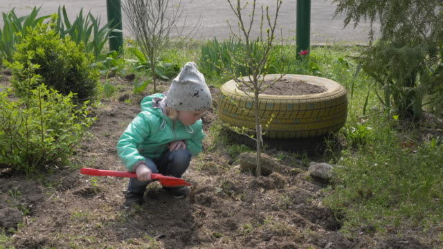 A child in the garden plays with a spatula, plants a tree