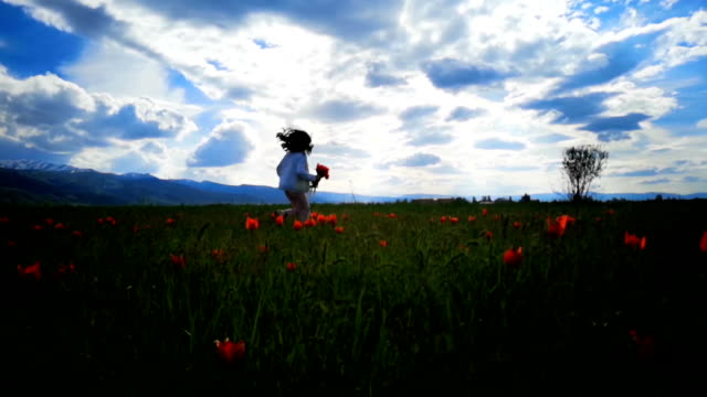 Child in tulip flower field.