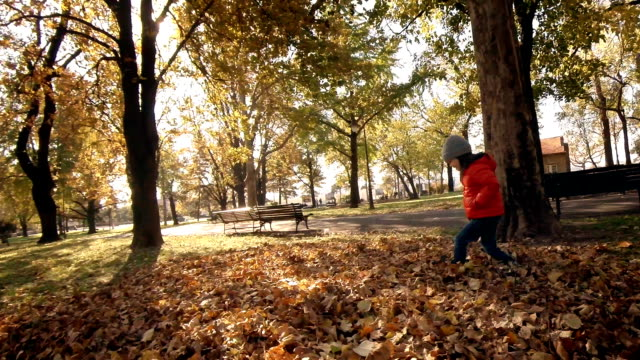 HOME VIDEOS- Child playing in a park video